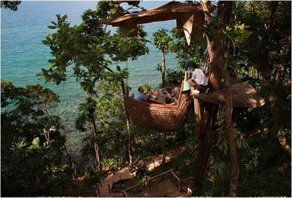 img_tree_dining_pod_thailand_2.jpg | Image