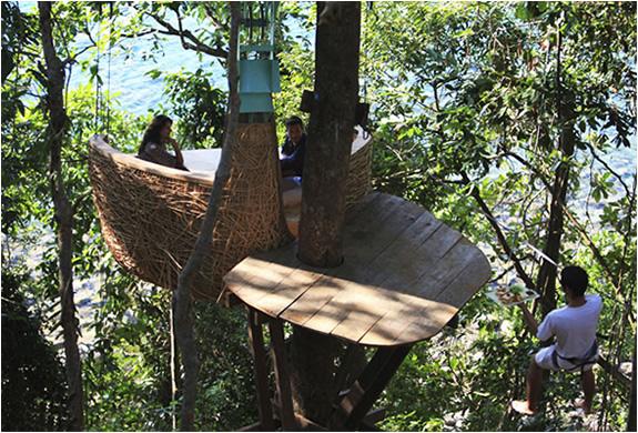 img_tree_dining_pod_thailand_3.jpg | Image