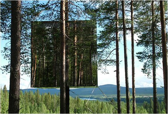 img_tree_hotel_sweden_2.jpg | Image