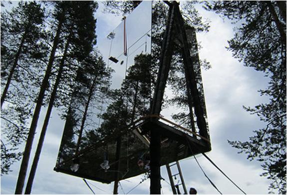 img_tree_hotel_sweden_4.jpg | Image