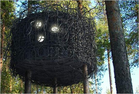 img_tree_hotel_sweden_5.jpg | Image