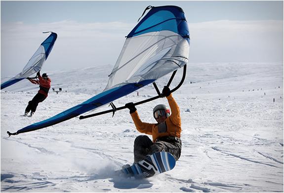 kitewing-5.jpg | Image