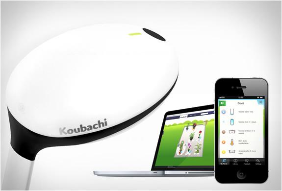 koubachi-wi-fi-plant-sensor-3.jpg | Image