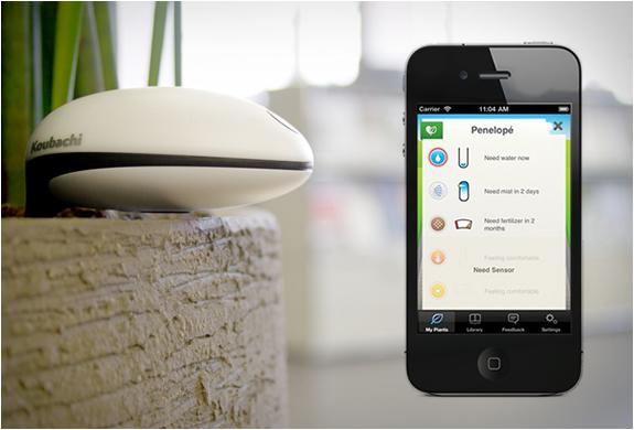 Koubachi | Wi-fi Plant Sensor | Image
