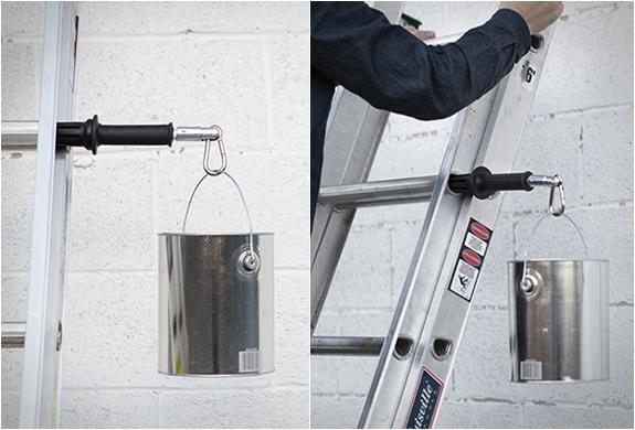 Ladderlimb | Image