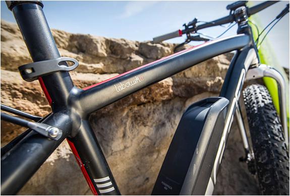 lebowske-electric-fat-bike-6.jpg