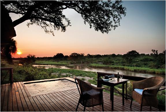 lion-sands-game-reserve-south-africa-14.jpg