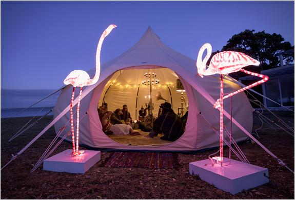 lotus-belle-tent-6.jpg