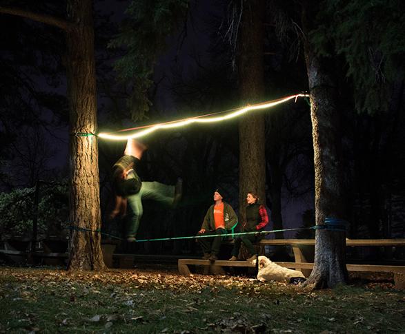 luminoodle-5.jpg | Image