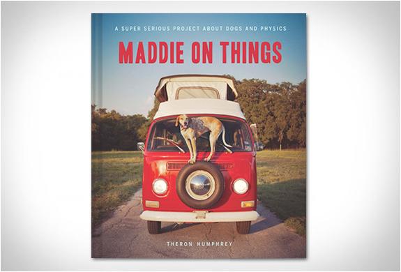 MADDIE ON THINGS | Image