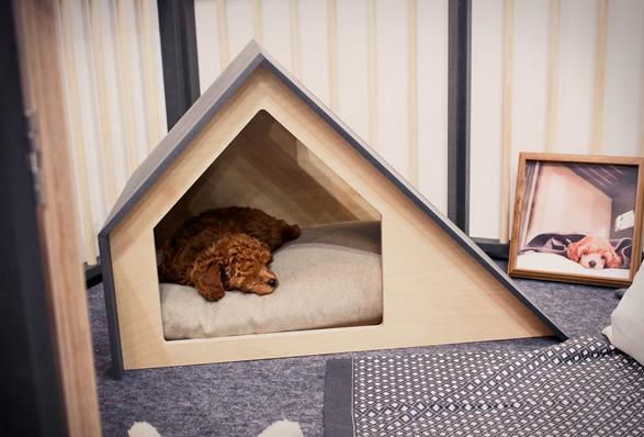minimalist-dog-houses-5.jpg | Image