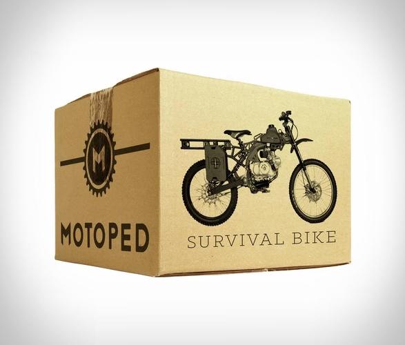 motoped-survial-8.jpg