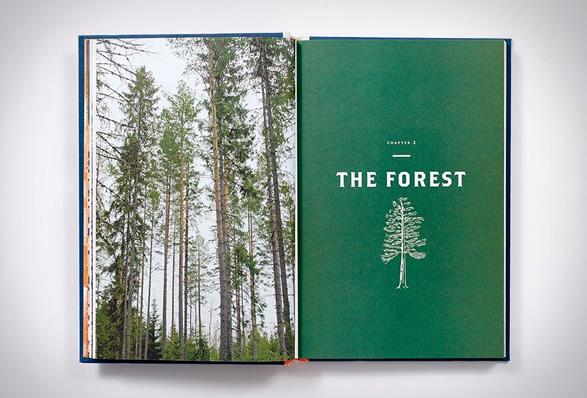 norwegian-wood-3.jpg | Image