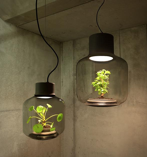 plant-light-mygdal-2.jpg | Image