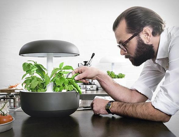plantui-smart-garden-2.jpg | Image