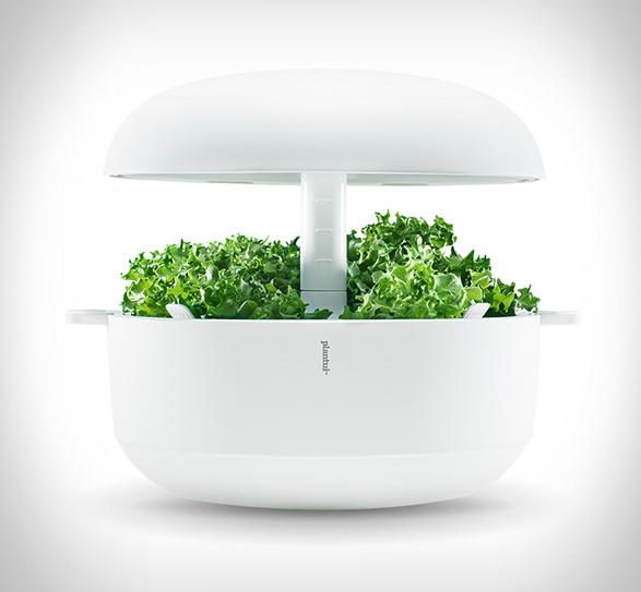 plantui-smart-garden-4.jpg | Image