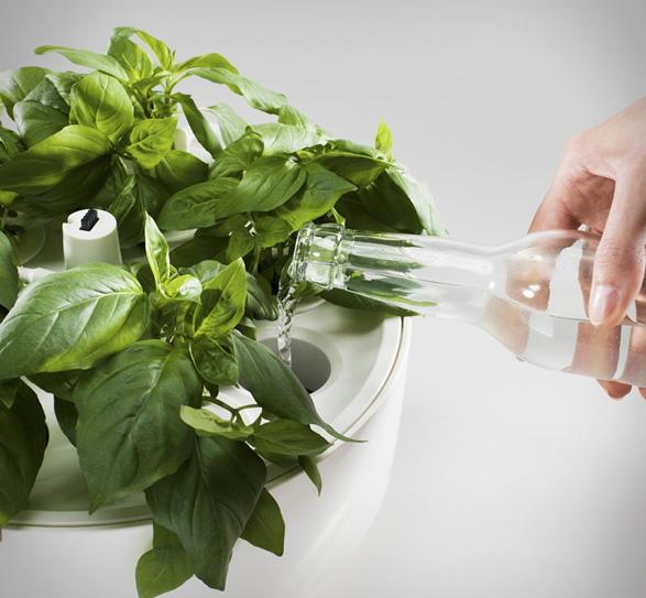 plantui-smart-garden-7.jpg