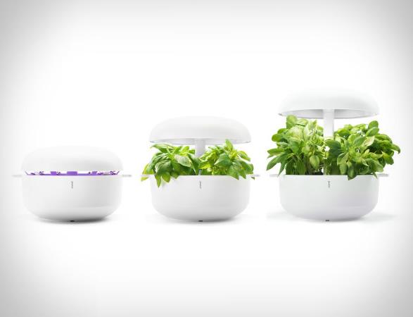 plantui-smart-garden-8.jpg