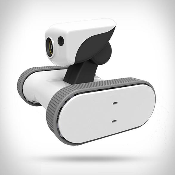 riley-home-monitoring-robot-2.jpg   Image