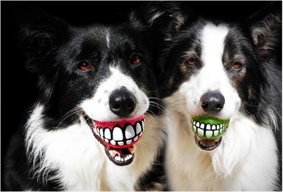 rog-grinz-ball-dog-toy-2.jpg   Image