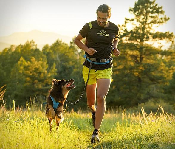 ruffwear-trail-runner-system-new-5.jpg | Image