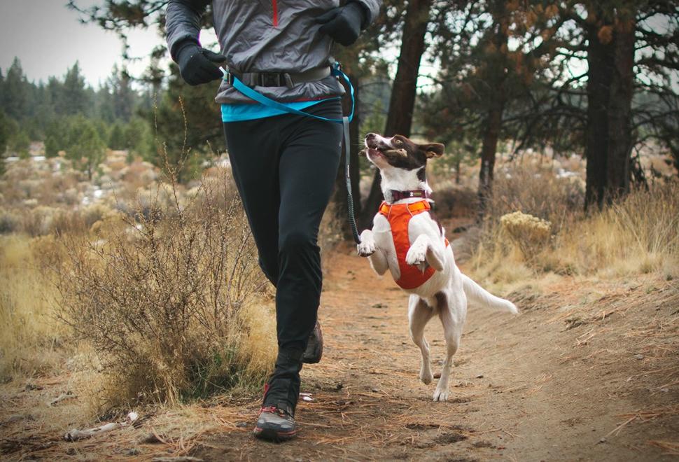 Ruffwear Trail Runner System | Image