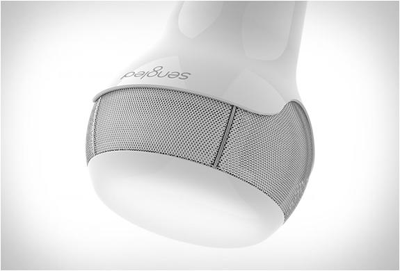 sengled-smart-bulbs-3.jpg | Image