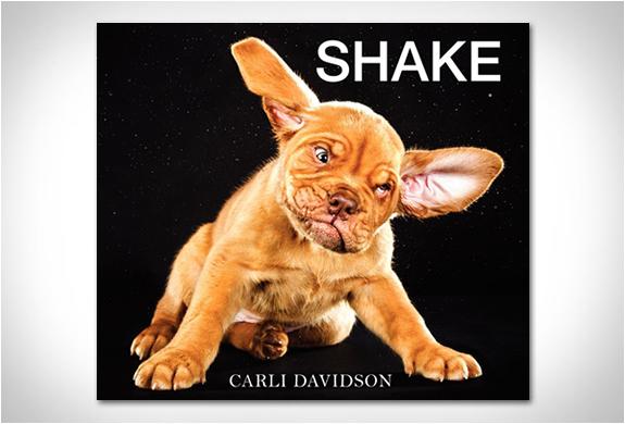 SHAKE | BY CARLI DAVIDSON | Image