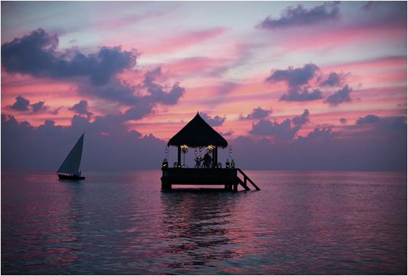 taj-exotica-maldives-7.jpg