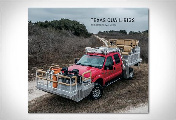 Texas Quail Rigs | Image