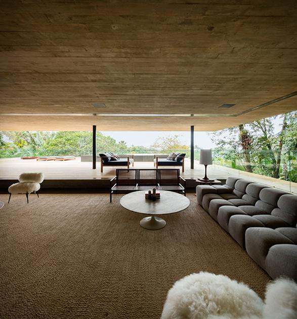 the-rainforest-house-12.jpg