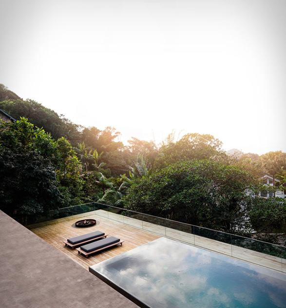 the-rainforest-house-15.jpg