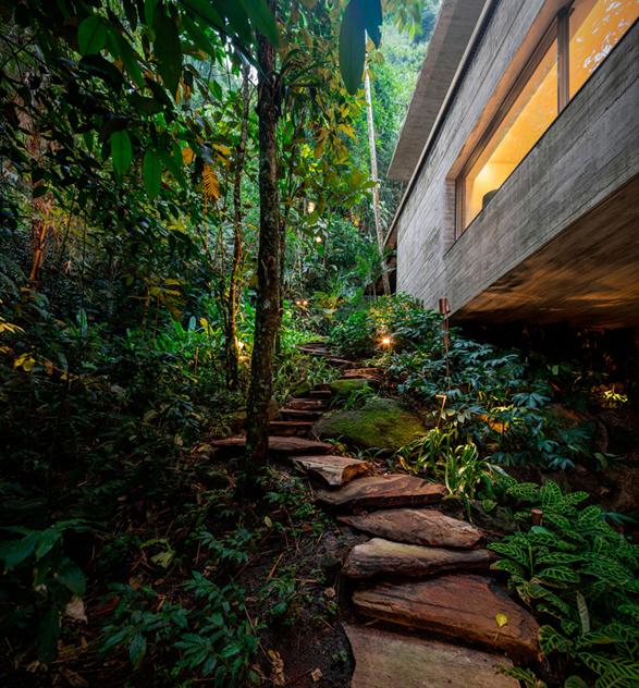 the-rainforest-house-18.jpg