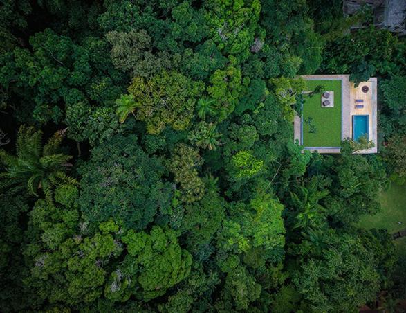 the-rainforest-house-20.jpg