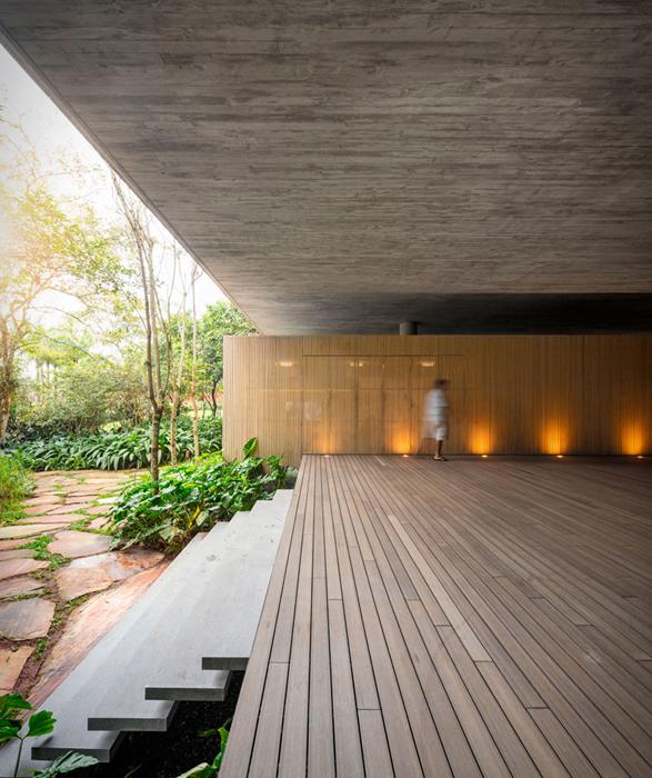 the-rainforest-house-4.jpg | Image