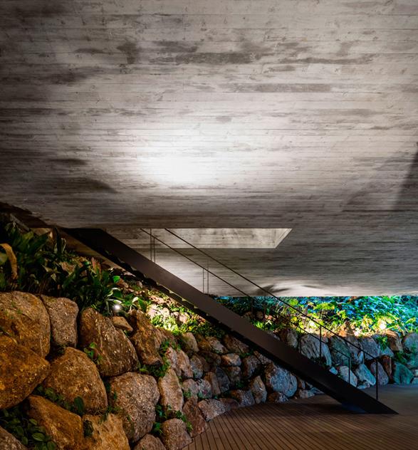 the-rainforest-house-5.jpg | Image