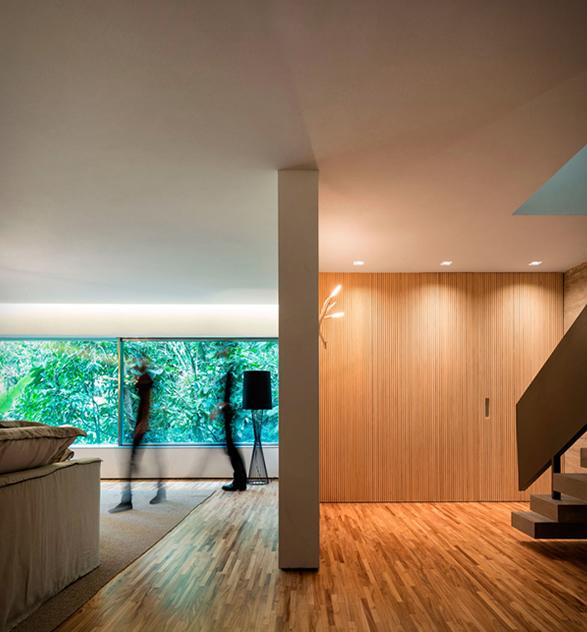 the-rainforest-house-7.jpg