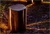 thum_cracked-log-lamps.jpg