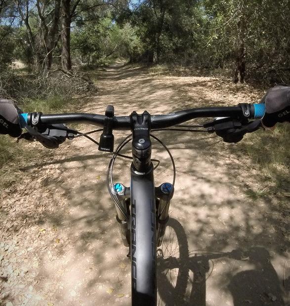 timber-mountain-bike-bell-3.jpg | Image
