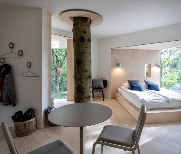 treetop-hotel-3.jpg | Image