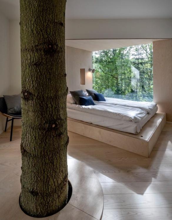 treetop-hotel-4.jpg | Image