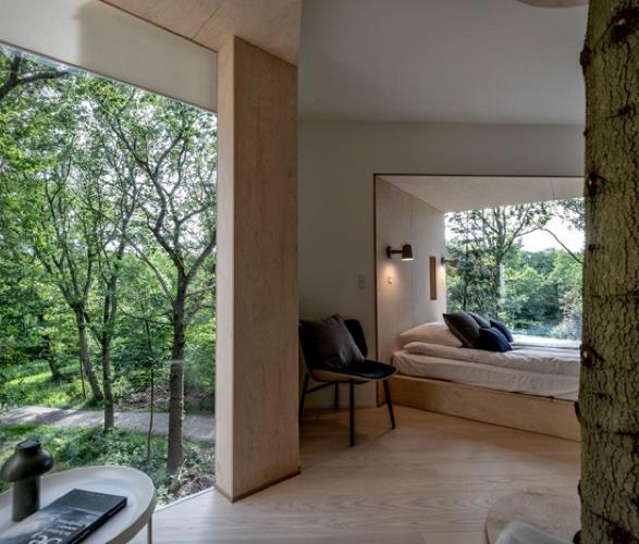 treetop-hotel-7.jpg