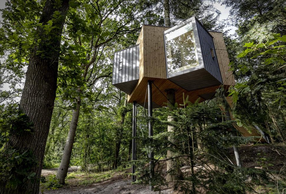 Treetop Hotel | Image