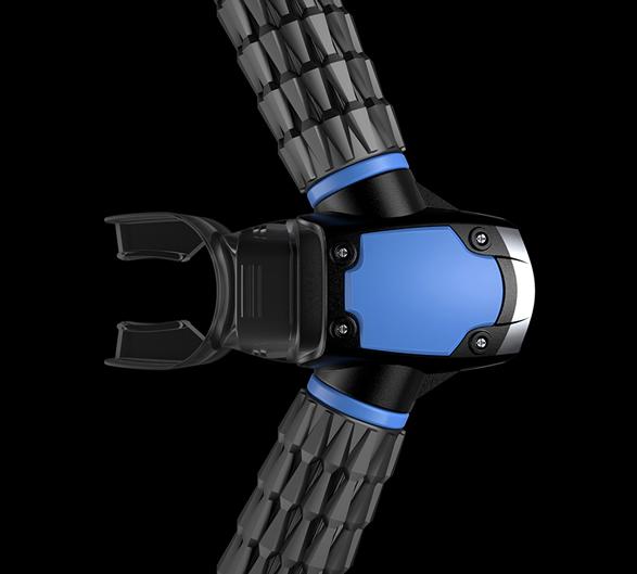 triton-gills-3.jpg | Image
