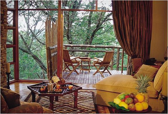 tsala-treetop-lodge-4.jpg | Image