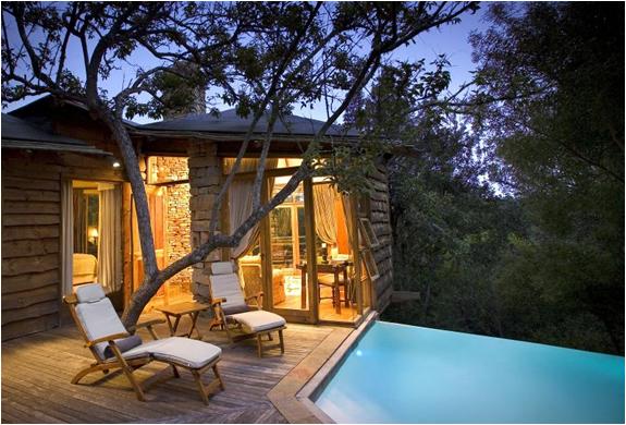 Tsala Treetop Lodge | Image