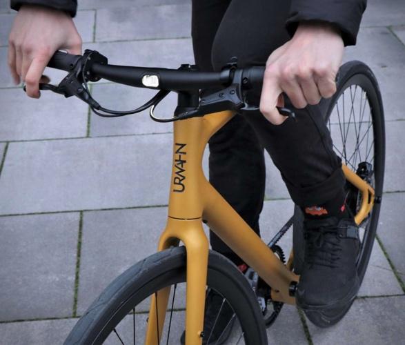 urwahn-platzhirsch-bike-3.jpg   Image