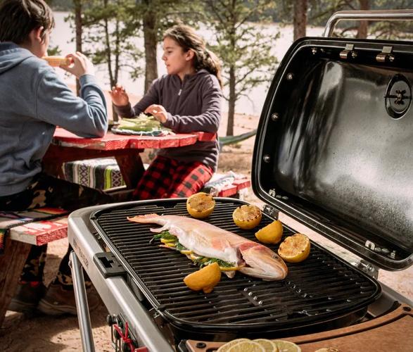 weber-traveler-portable-gas-grill-5.jpg | Image