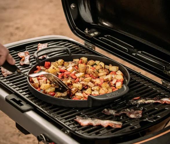 weber-traveler-portable-gas-grill-6.jpg