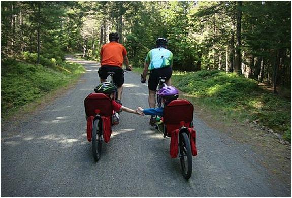 weehoo-bicycle-trailer-3.jpg | Image